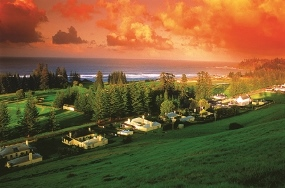 <div><h3><a href='/d9e29353/TASTE_FARM_FRESH_FOOD_ON_NORFOLK_ISLAND'>TASTE FARM FRESH FOOD ON NORFOLK ISLAND</a></h3><p><strong><strong>Press releases from NFI Tourism</strong></strong></p></div>